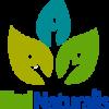 Logotipo MedNaturalis